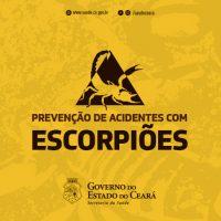 banner_acidentes_escopioes1
