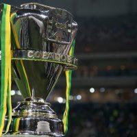 trofeu-da-copa-do-brasil-1472048581021_v2_900x506
