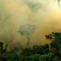 queimada_em_novo_progress_-_para_-_leonardo_f-_freitas_cc