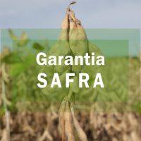 garantia-safra-scaled
