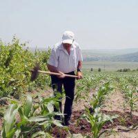 trabalhador-rural-lavoura