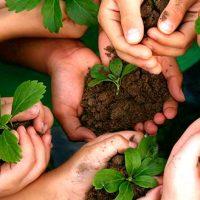 meio-ambiente-desenvolvimento-sustentailidade